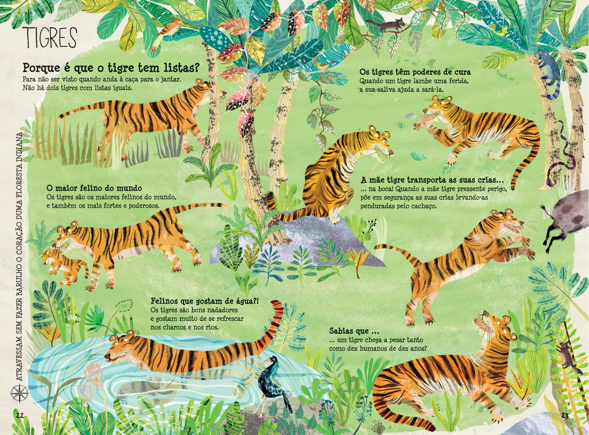 O Grande Livro dos Animais - Livro - WOOK