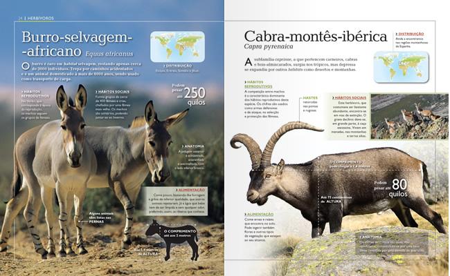 Wook.pt - Burro Selvagem Africano e Cabra Montês Ibérica