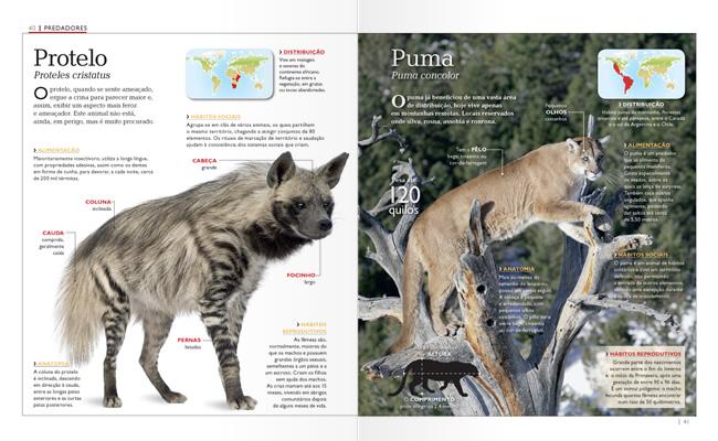 Wook.pt - Protelo e Puma