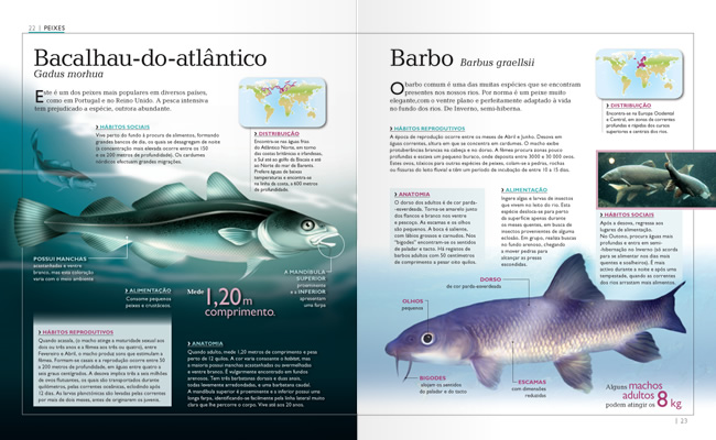 Wook.pt - Bacalhau-do-Atlântico e Barbo