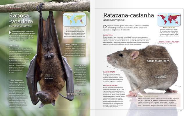 Wook.pt - Raposa-Voadora e Ratazana-Castanha