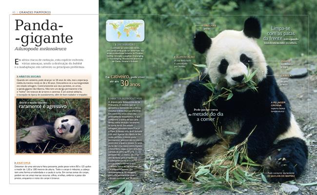 Wook.pt - Panda-Gigante